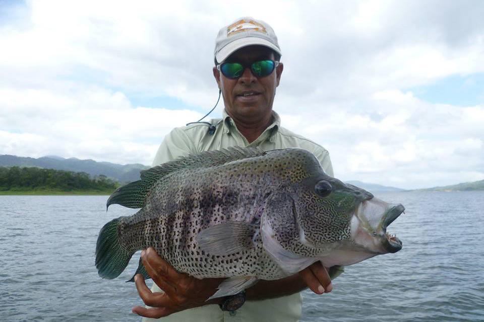 Costa rica freshwater fishing rainbow bass fishing for Costa rica fishing packages
