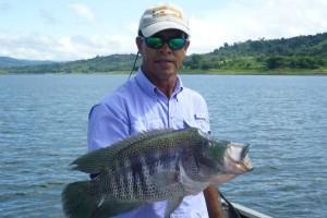 Rainbow Bass fishing