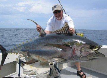 Panama Tuna
