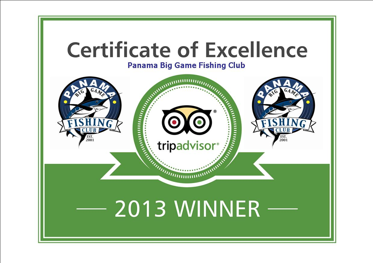 Certificate of Excellence-2013georgi