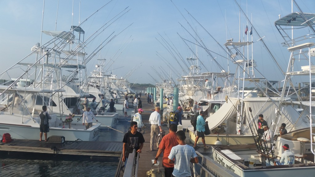 The busy Marina Pez Vela bustling with anglers in the morning.