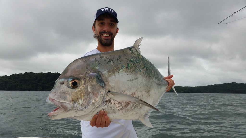 African pompano in Panama