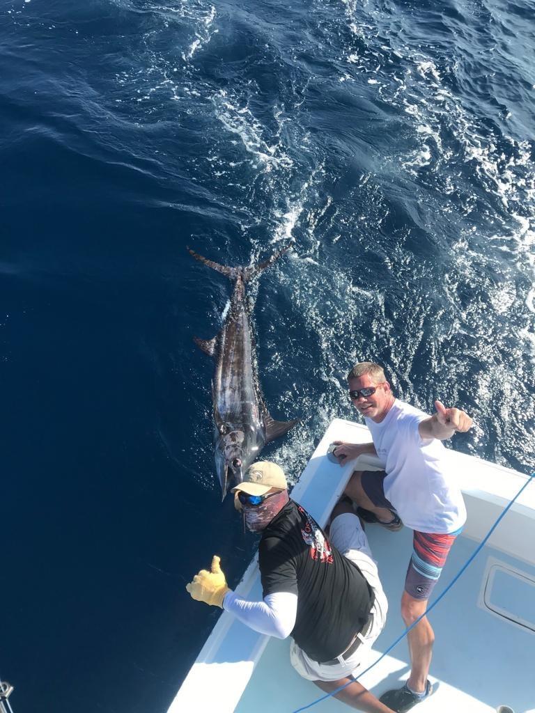 Quepos marlin fishing