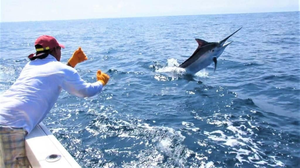 Panama Offshore Fishing