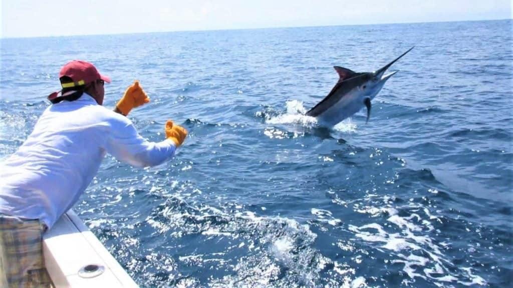 Panama Offshore Fishing