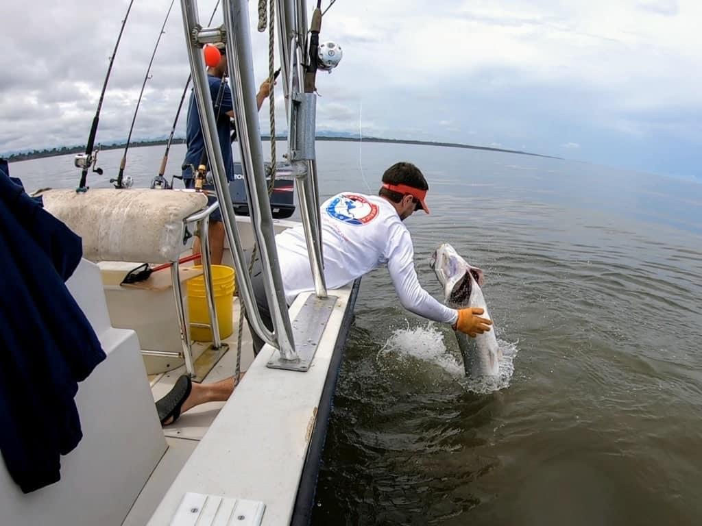 Panama tarpon fishing