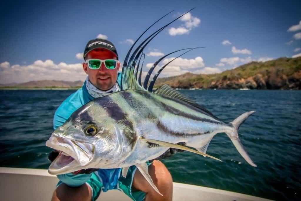 roosterfish Panama