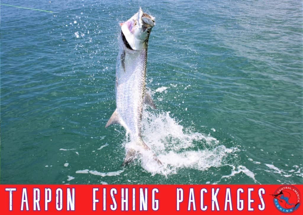 Costa Rica Tarpon Fishing Packages