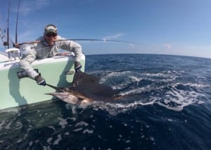Fly fishing for billfish in Costa Rica