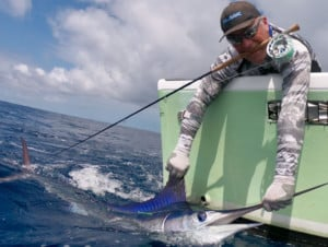 Fly fishing for marlin