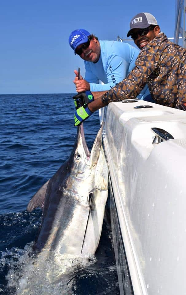 Panama Marlin Fishing