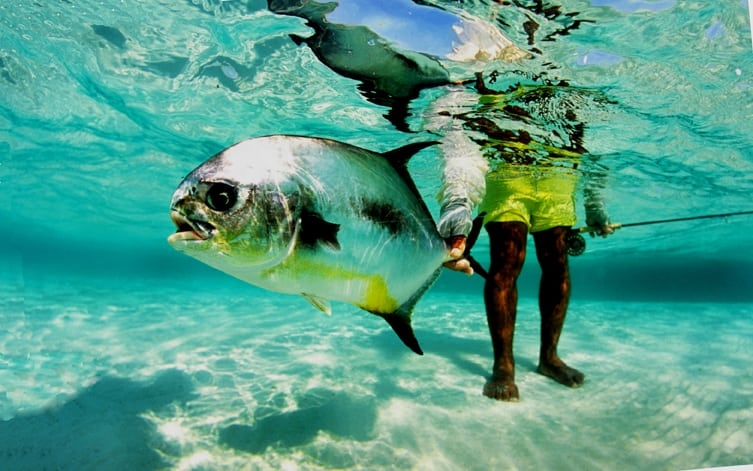 permit in Belize