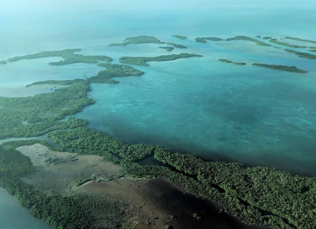 Fishing the lagoons of Ambergris Caye