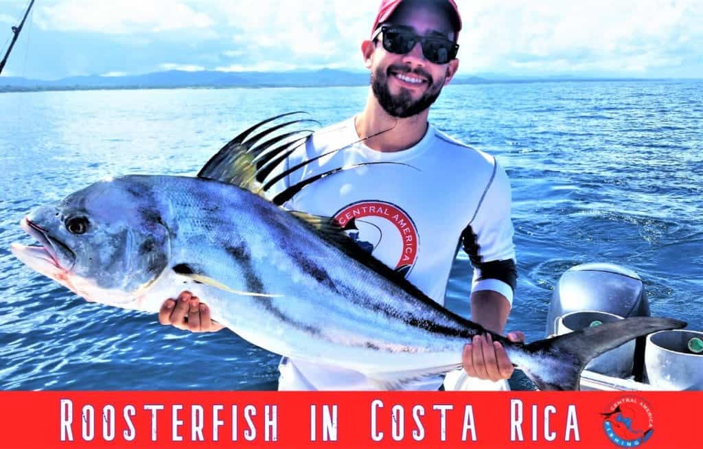 Costa Rica roosterfish trips