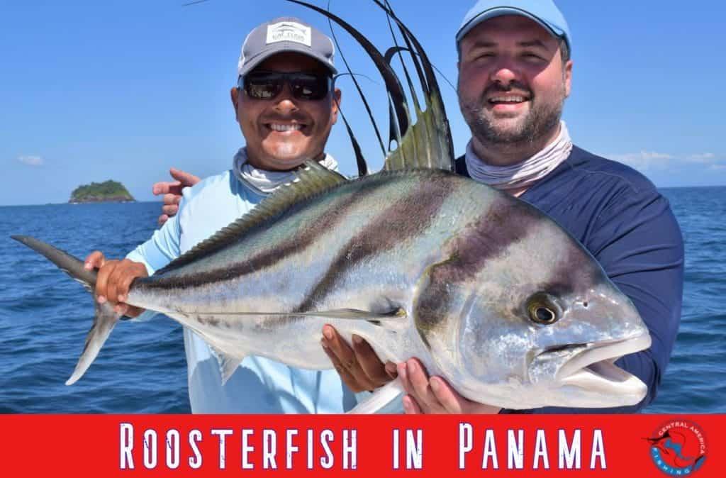 Panama Roosterfish trips